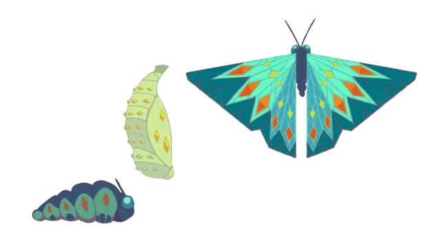 borboleta, crisalda e larva_colorindo